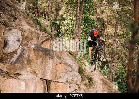 trial biker riding downhill outdoors in pine forest - Stock Photo