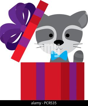 cute and adorable raccoon with gift - Stock Photo