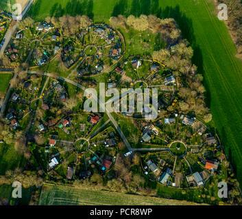 Allotment garden at Heuweg in Stockum, circular garden arrangement, allotments in spring, Witten-Stockum, Witten, Ruhr area, North Rhine-Westphalia, Germany - Stock Photo