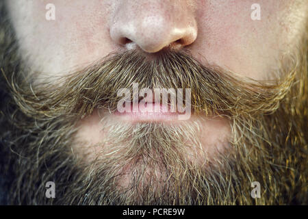 Mustache Close Up. Part of the Face of a Bearded Man - Stock Photo