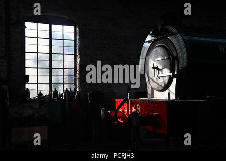 NCB 49 rests in Marley Hill Shed on the Tanfield Railway. - Stock Photo