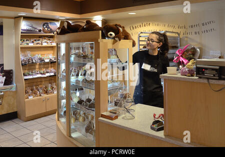 Clerk at Rocky Mountain Chocolate factory in Boulder - Stock Photo
