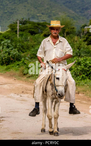 old Cuban farmer on a donkey mule with hat in the Valle de los Ingenios, Trinidad, Cuba, Sancti Spíritus, Cuba - Stock Photo