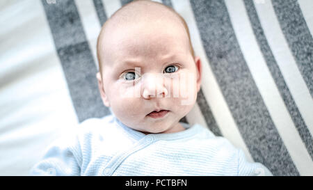 Baby, boy, 3 months old, looking seriously at the camera+C2614:D2626 - Stock Photo