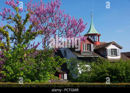 View from the Lindenhof to historic cottages at the Limmat, district Lindenhof district, Zurich, canton of Zurich, Switzerland - Stock Photo