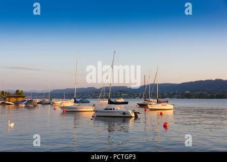 View from Utoquai on Lake Zurich in the evening, old town, Zurich, Canton of Zurich, Switzerland - Stock Photo