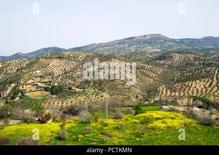 View to the orchards and olive groves from the balcony of the Adarve in the neighborhood of the villa in the city of Priego de Cordoba in Andalucia in southern Spain - Stock Photo