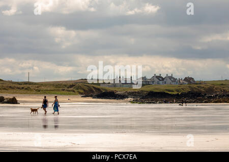 North Wales, 4th August 2018. UK Weather: Warm sunny weather returns to many parts of the UK this weekend as these people discovered enjoying a day on the beach at Porth Nobla Beach, Anglesey, North Wales  © DGDImages/AlamyNews - Stock Photo