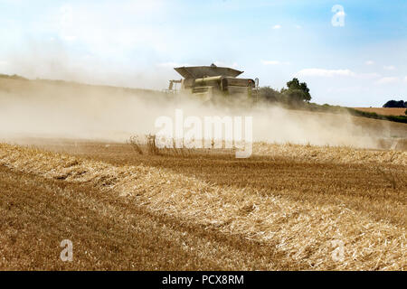 Great Brington, Northamptonshire, UK. 4th August 2018. Farm hands harvesting with a Claas 770 Lexton harvester working hard during the afternoon heat to cut the wheat field, making the most of the hot summer weather. Credit:  Keith J Smith./Alamy Live News - Stock Photo