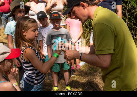 Woodstock, UK, 4th August 2018. Visitors flocked to BBC Countryfile Live, held within the grounds of Blenheim Palace. Animals, wildlife, food, outdoor sports, conservation, farming, rural affairs, entertainment, all were represented. A demonstration at the BTO stall on ringing, weighing and measuring a grey wagtail (motacilla cinereabto) before it was released by a young girl. Credit: Stephen Bell/Alamy Live News. - Stock Photo