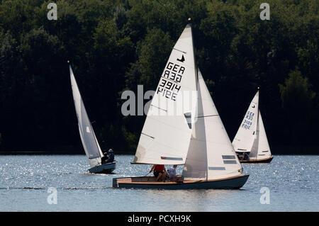 Segelregatta des SCV Segelclub Ville, Zugvogel, Schwertzugvogel - Stock Photo