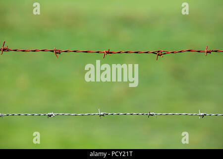 A rusty old and a brand new barbed wire next to each other against a blurry green background. - Stock Photo
