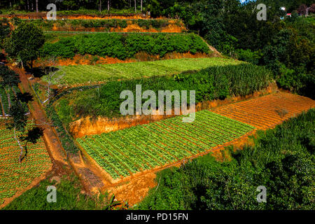 Close up aerial view from the cable car in Dalat - Stock Photo