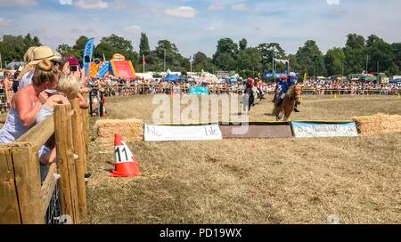Woodstock, Oxfordshire, UK.  4th August, 2018. Over 120,000 people attended the Countryfile Live, held on the grounds of Blenheim Palace,  during the scorching weekend. Temperatures reached into the 30s  Celsius as hot weather covered the UK.  Shetland pony races at Countryfile Live. - Stock Photo