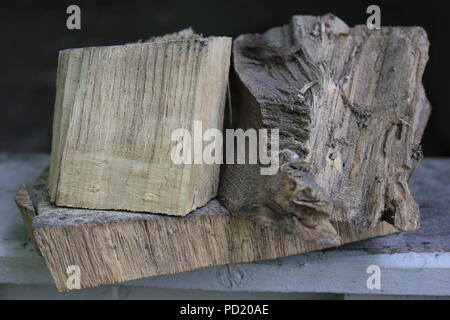 Three random pieces of wood arranged on a shelf at the Kennicott Grove in suburban Glenview, Illinois on a summer day. - Stock Photo