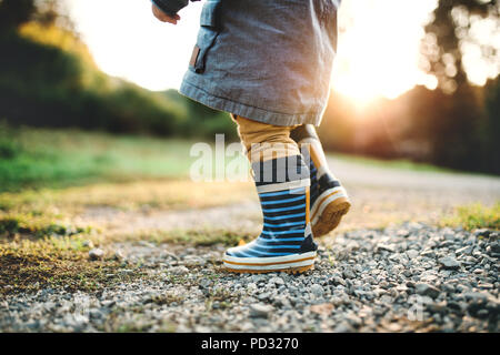 A little toddler boy walking outdoors in nature at sunset. Rear view. - Stock Photo
