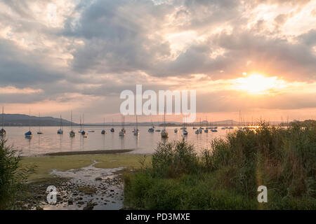 Sailing boats on Untersee, sunset, Allensbach, Lake Constance, Baden-Württemberg, Germany - Stock Photo