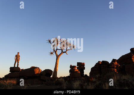 Man standing on big rock with hands in pockets near a lone tree in Quiver tree in the setting sun, forest and tourist attraction of southern Namibia - Stock Photo