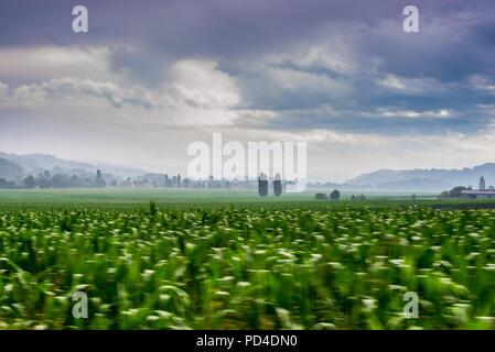 Shot of fields taken near Arzacq France - Stock Photo