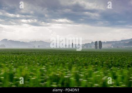Shot of fields taken near Arzacq France
