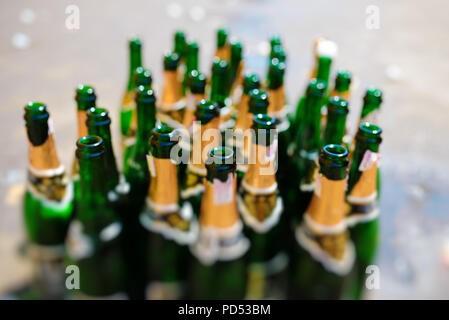 lots of empty bottles of sparkling wine on a blurry background. - Stock Photo