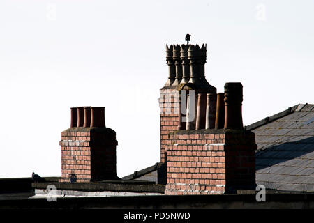 Victorian chimney pots on brick chimney stacks over grey slate rooves - Stock Photo