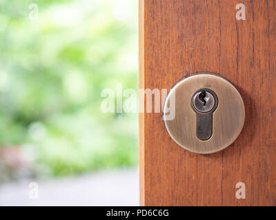 Close-up stainless steel modern key hole on wooden door on green nature background. - Stock Photo