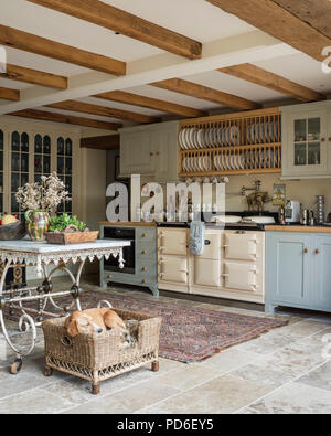 Light blue fitted farmhouse kitchen with plate rack and sleeping dog in basket. - Stock Photo