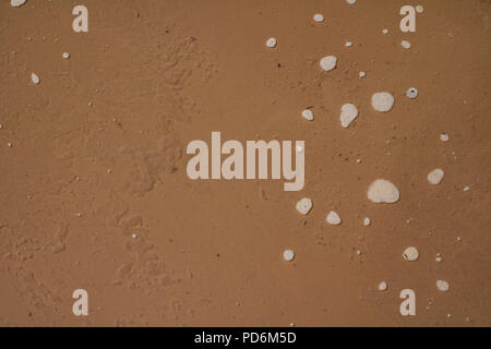 Dirty contaminated brown water background in spring or autumn time. - Stock Photo