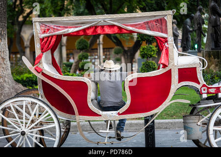A horse drawn carriage driver waits for customers in downtown Guadalajara, Mexico. - Stock Photo