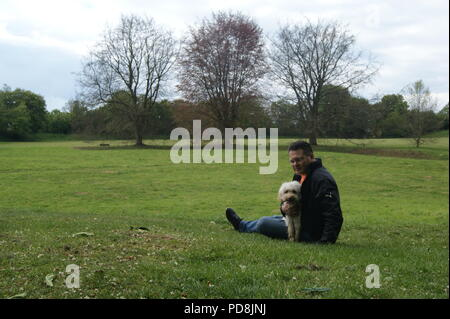 Man and cockerpoo dog in park - Stock Photo