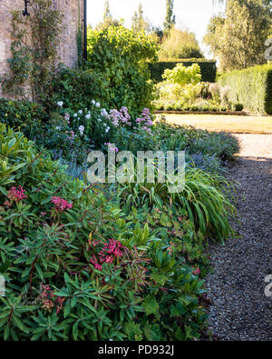 Planted bed in garden - Stock Photo