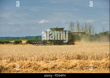 John Deere Combine Harvester cutting wheat in the East Riding of Yorkshire, England , UK, GB. - Stock Photo