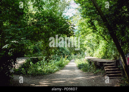 Disused, overgrown concrete train platforms of the old Crouch End Station along the old railway line/ track of the Parkland Walk in Haringey, N.London - Stock Photo