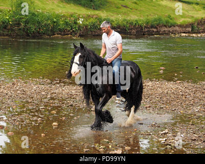 solo male rider on wet horse after emerging from River Eden at annual Appleby Horse Fair, Appleby-in-Westmorland, Cumbria, England, UK - Stock Photo
