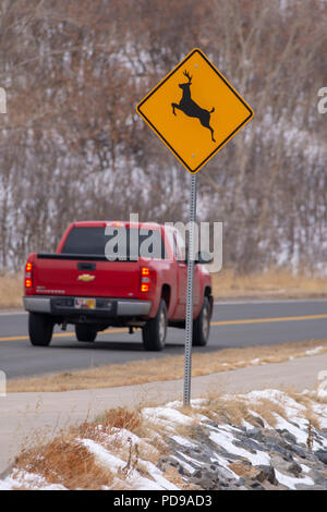 Motorist traveling through a deer crossing area conveyed by warning sign, Castle Rock Colorado US. - Stock Photo