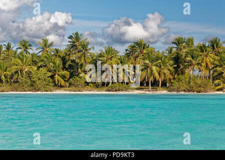 Dream beach, sandy beach with palm trees and turquoise sea, cloudy sky, Parque Nacional del Este, island Saona Island, Caribbean