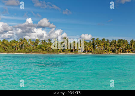 Dream beach, sandy beach with palm trees and turquoise sea, cloudy sky, Parque Nacional del Este, island Saona Island, Caribbean - Stock Photo
