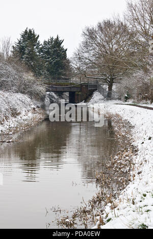 a wintry view along the Bridgwater and Taunton Canal from the towpath on the canal banks close to Obridge in Taunton - Stock Photo