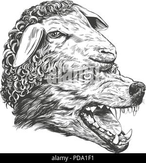 Wolf in sheep s clothing, Christian parable, hand drawn vector illustration realistic sketch - Stock Photo