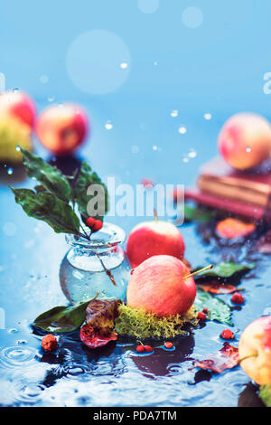 Autumn apples still life. Fall harvest under the rain with water drops and copy space. Red small organic ranet apples with a glass jar and fallen leaves - Stock Photo