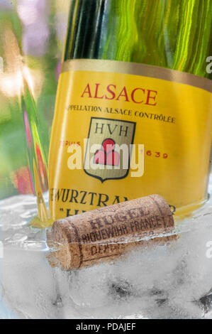 'Hugel' Gewurztraminer white wine bottle and cork in wine cooler in alfresco floral garden situation Riquewihr Alsace France - Stock Photo