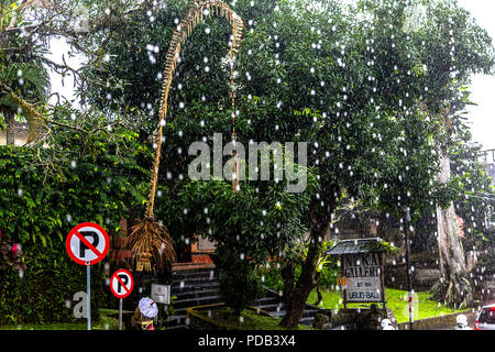 Frozen raindrops in the tropics of Ubud, Bali, Indonesia. Street signes and trees in the background. - Stock Photo