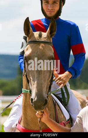 Jockey and his horse - Stock Photo