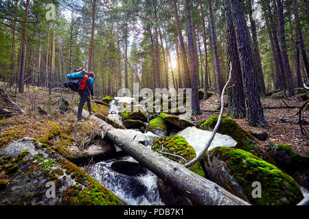 Hiker in with big backpack walking to the beautiful forest in Karkaraly national park in Central Kazakhstan - Stock Photo