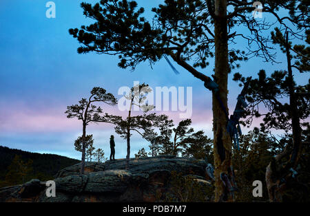 Man in silhouette between Pine trees of Karkaraly national park in Central Kazakhstan at purple sunset - Stock Photo