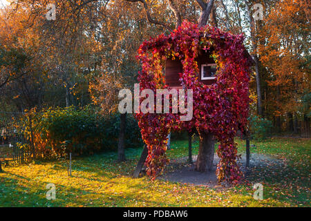 A house on a tree - Stock Photo