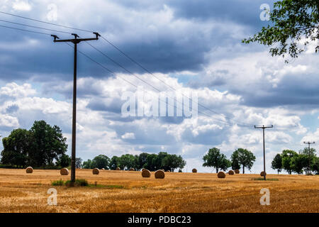 Germany,Stolpe an der Peene, Farm land after wheat harvest with rolled bales of hay,trees & electriity poles. - Stock Photo