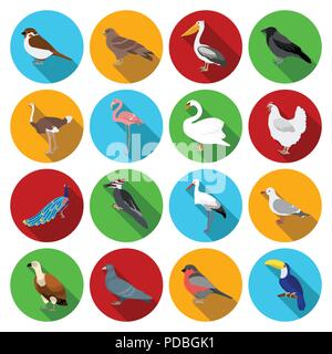 Types of birds flat icons in set collection for design  Home