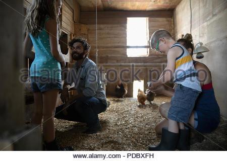 Family feeding chickens in barn - Stock Photo